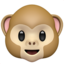 monkey_face