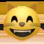 smile_cat