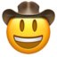 face_with_cowboy_hat