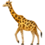 giraffe_face